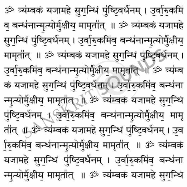 Tryambakam Mantra